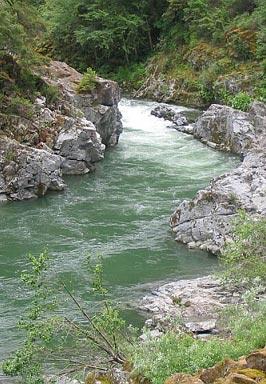 river266x384